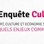 Enquete culture ESS